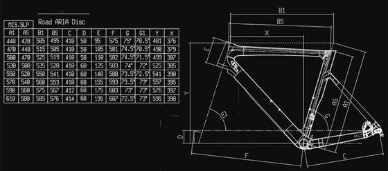 Bianchi Aria Disc Rival eTap AXS 12sp