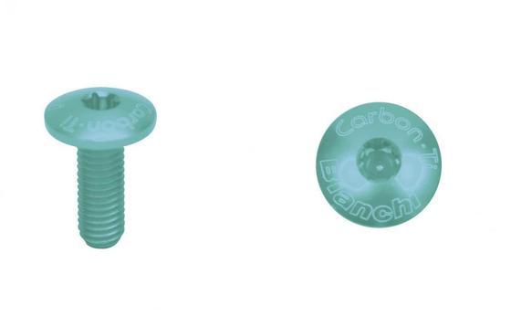 Bianchi Carbon-TI torx screws